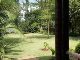 ea_Front_Garden